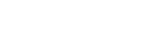 premium carpet cleaning logo