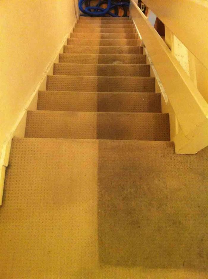 Carpet Cleaning London Starting From 163 7 Premium Carpet
